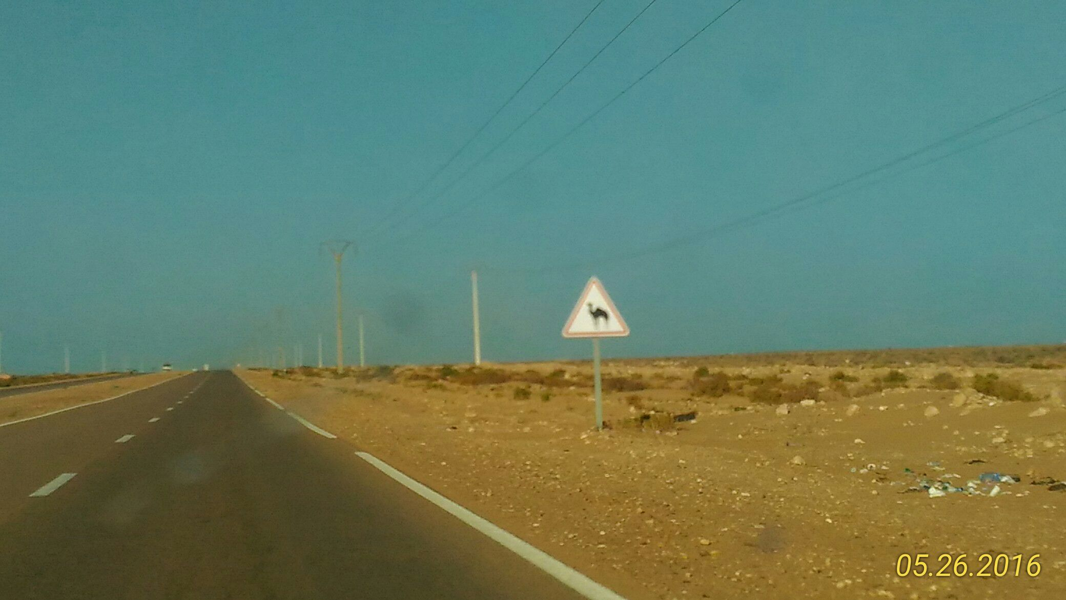 Route désert panneau chameau